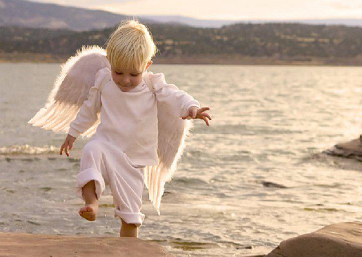 A megbocsátás csodája - megértés, feldolgozás, újjászületés