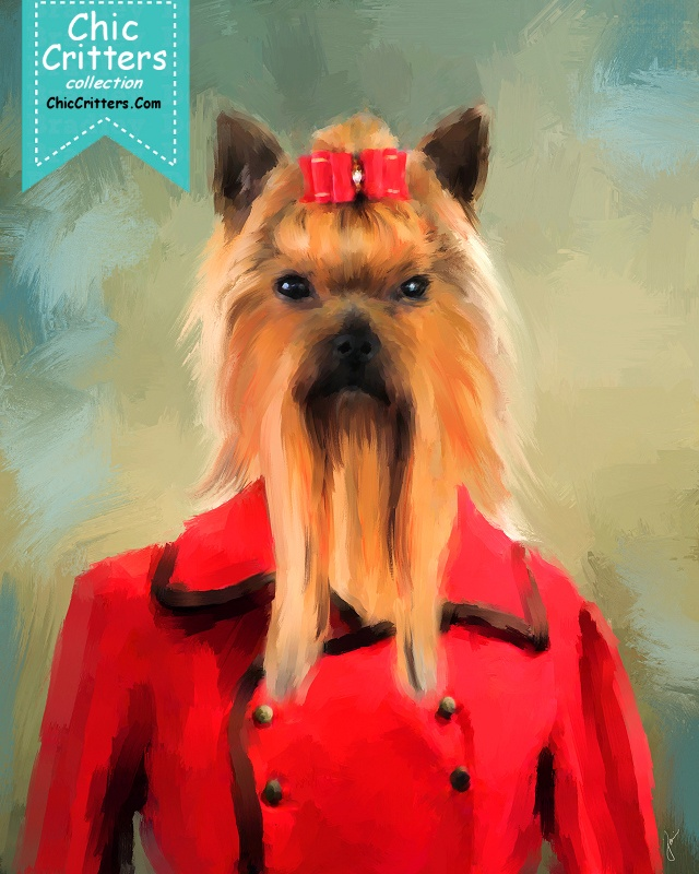 Chic Yorkshire Terrier