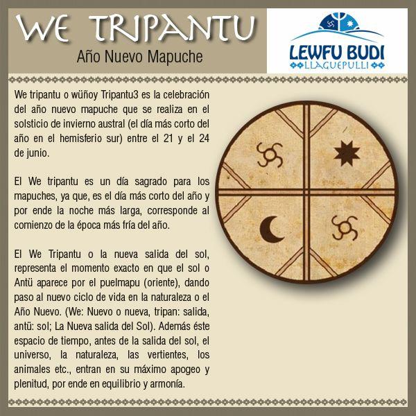 we tripantu - Buscar con Google