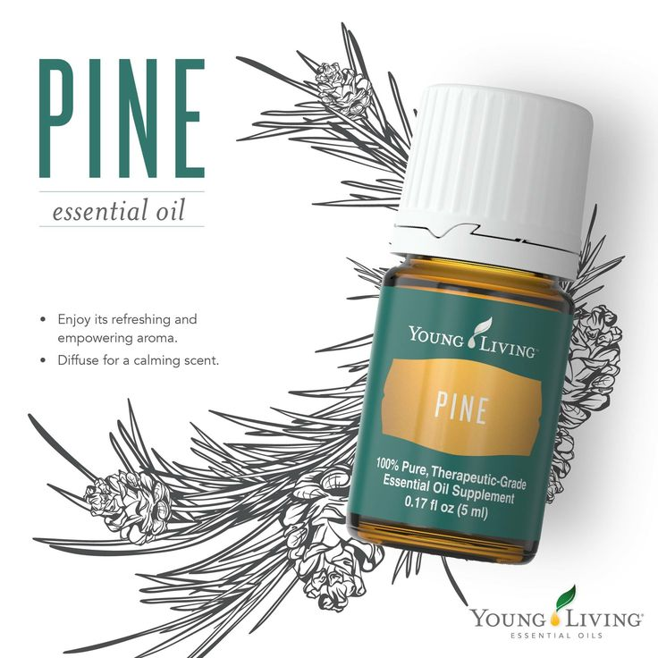 Best 25 Pine Essential Oil Ideas Only On Pinterest Essential Oil Combinations Salve Recipes