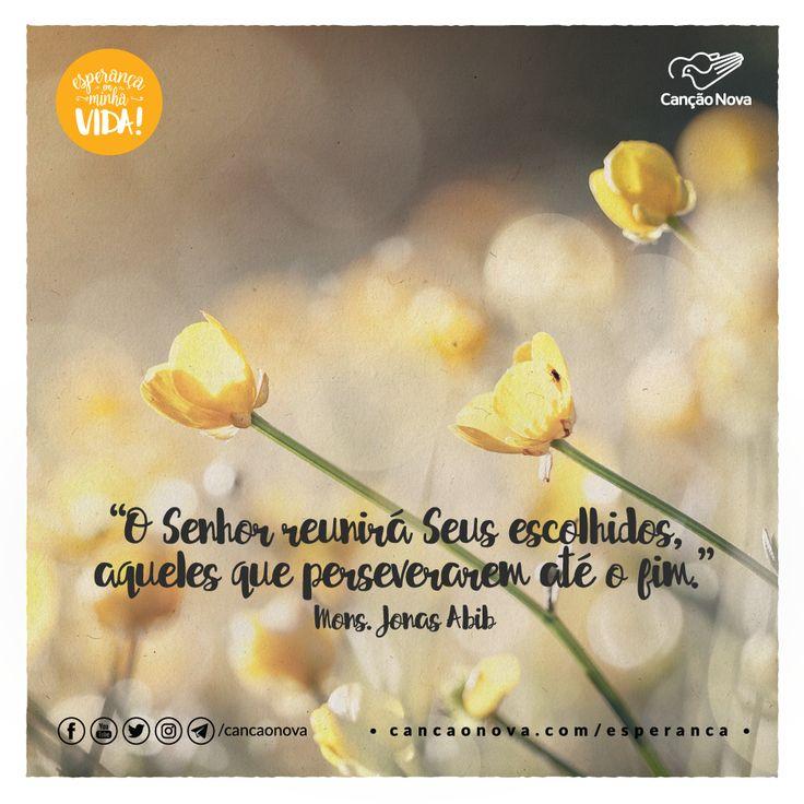 """""""O Senhor reunirá Seus escolhidos, aqueles que perseverarem até o fim."""" Mons. Jonas Abib"""