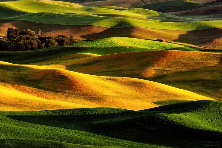 "Rolling Hills of Palouse by Noppawat ""Tom"" Charoensinphon, via 500px"