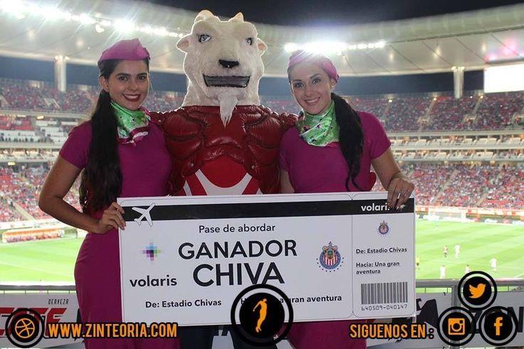 #Activación para @viajavolaris ✈️  partido @chivas vs @tolucafc #GOs #Edecanes #Animación  #EstadioOmnilife  #AdvertisingAgency   #Marketing #BelowTheLine