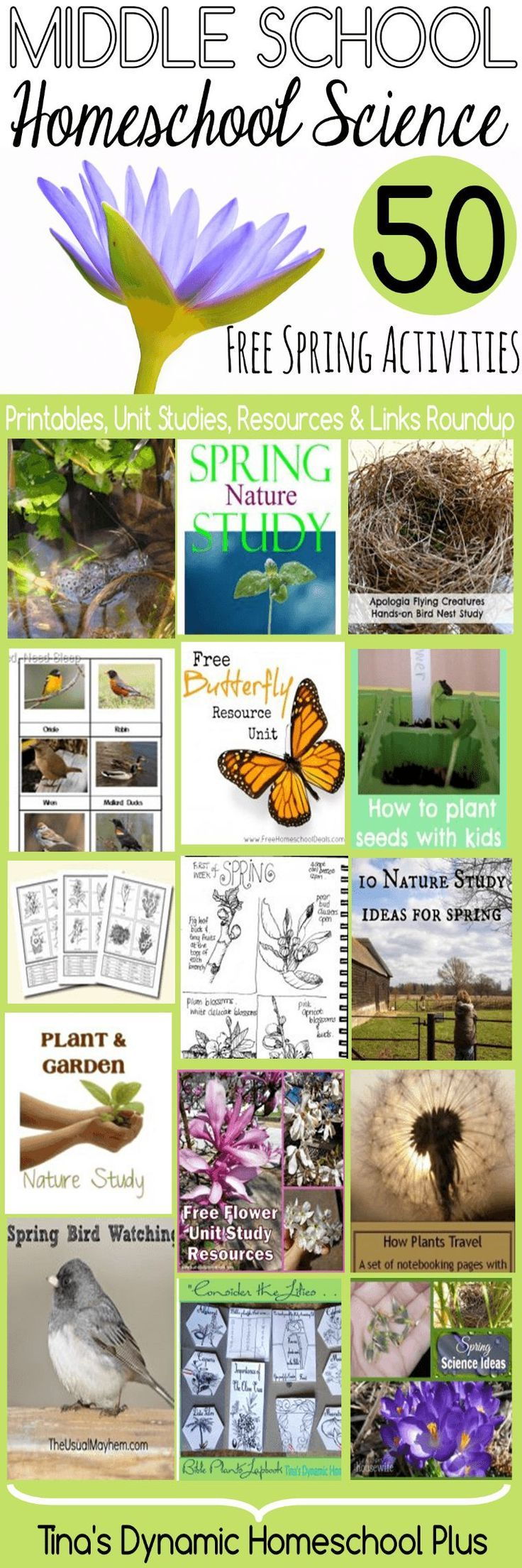 Middle School Homeschool Science 50 Free Spring Activities | Tina's Dynamic Homeschool Plus