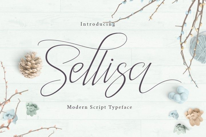Sellisa is a stylish calligraphy font that features a varying baseline, smooth line, classic and elegant touch. Can be used for various purposes.such as headings, signature, logos, wedding invitation, t-shirt, letterhead, signage, label, news, posters, badges etc.