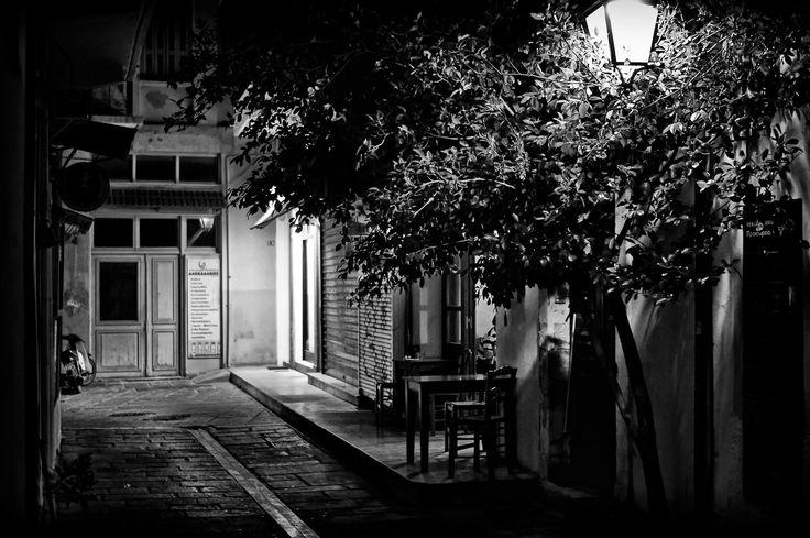 tree-in-the-alley.jpg (1500×997)