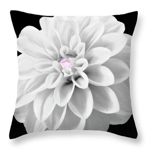 I have a few dahlias in the garden, in the summer.   I made a black and white photo of one of them. And added a touch of selective color, light pink.   This image makes a great wall art for the minimalistic or the black and white art fan :)  Wonderful design for a pillow and bag.