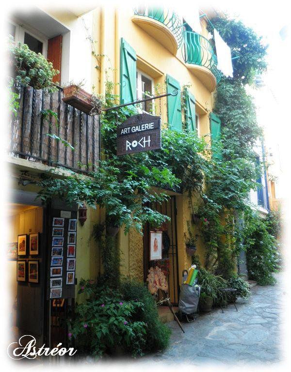 Collioure - Sud de la France - Côte vermeille