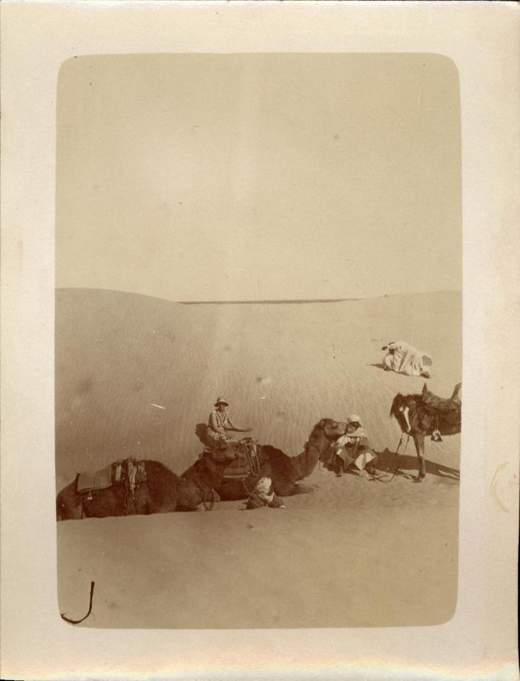 snapshot Méharée désert dromadaire Algérie Afrique vers 1930 voyage
