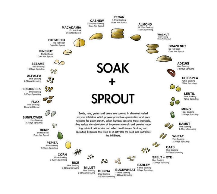 Do you sprout? A handy chart that explains how long to soak different types of grains.