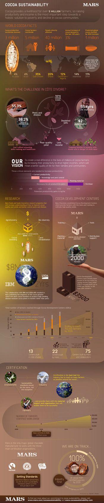 Cocoa sustainability infographic