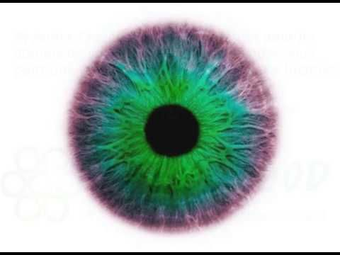 ▶ Yoga des yeux - relaxation - YouTube