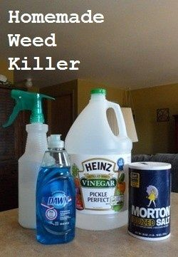 DIY homemade weed killer  1 gallon of white vinegar 1/2 cup salt Liquid dish soap (any brand) Empty spray bottle Put salt in the empty spray bottle and fill it the rest of the way up with white vinegar. Add a squirt of liquid dish soap. This solution works best if you use it on a hot day. Spray it on the weeds in the morning, and as it heats up it will do its work.