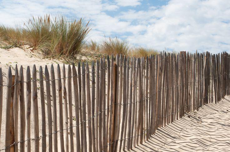 Dunes Mimizan, France.