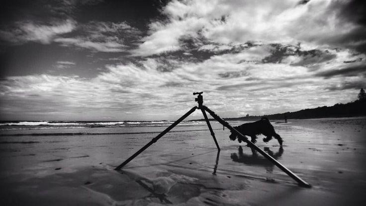 Frank at the Beach  Courtesy: Simon Pollock