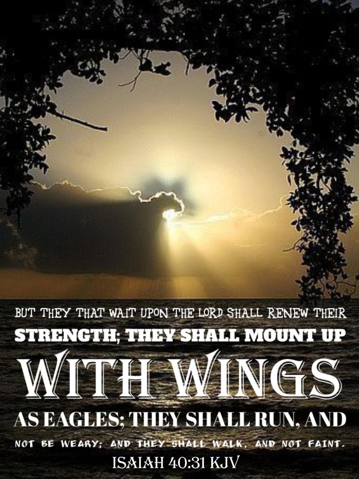 Image result for they that wait upon the lord shall renew their strength