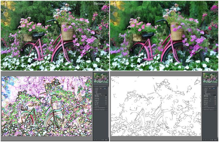 Create a Digital Painting with Topaz Simplify « Topaz Labs Blog