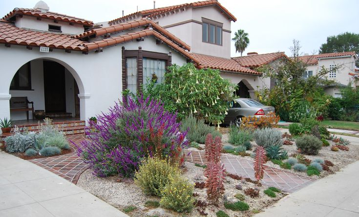 succulents and other low water plants in the front yard landscaping of a home in california