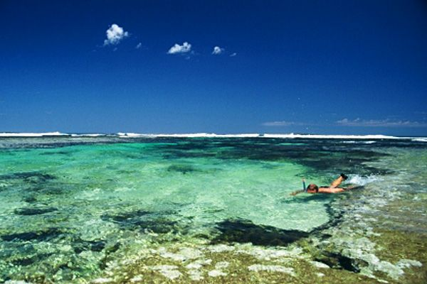 Coral Bay - Ningaloo Reef Western Australia, amazing place on the edge of the desert, snorkel just metres from the waters edge and take a tour boat out past the reef to swim with whale sharks. We visited in early winter and it was perfect.
