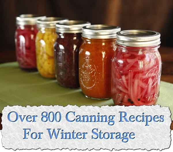 Over 800 Canning Recipes For Winter Storage    Perhaps you see the pallets of canning jars at the hardware stores and supermarkets, but tell yourself cannin