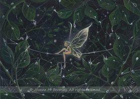 Dewdrop Fairy