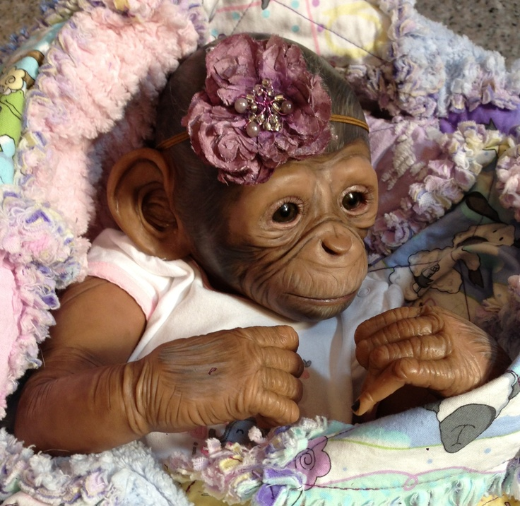 Ooak Chimp by Amy Ferreira -Polymer Clay