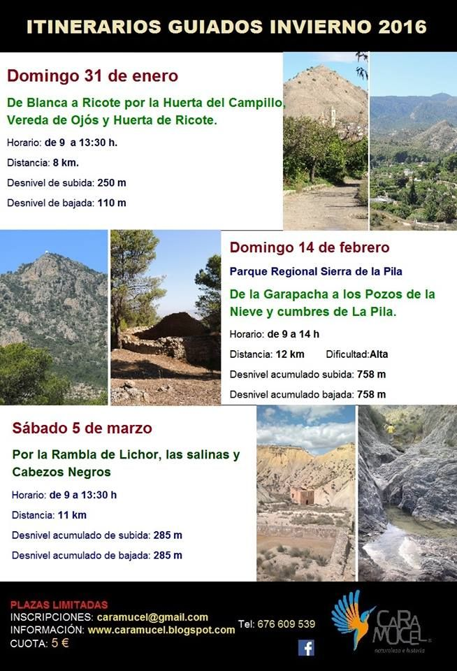 De la Garapacha a los Pozos de la Nieve y cumbres de La Pila con Caramucel, Naturaleza e Historia.