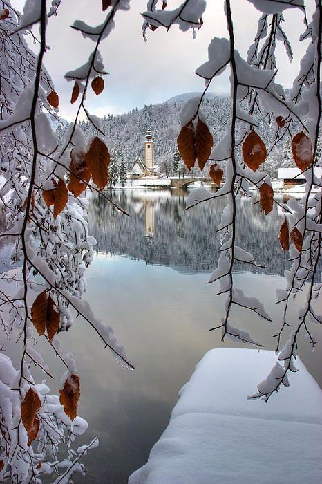 ღღ Winter, Lake Bohinj, Slovenia photo via igor