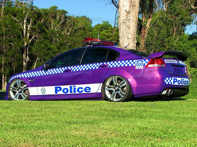 Id pull over for this cop car!