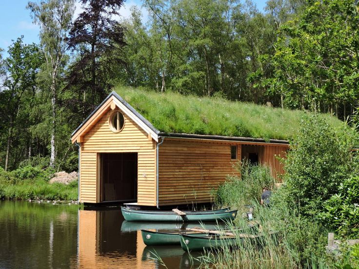 Commercial and public green roofs : Modern houses by Organic Roofs