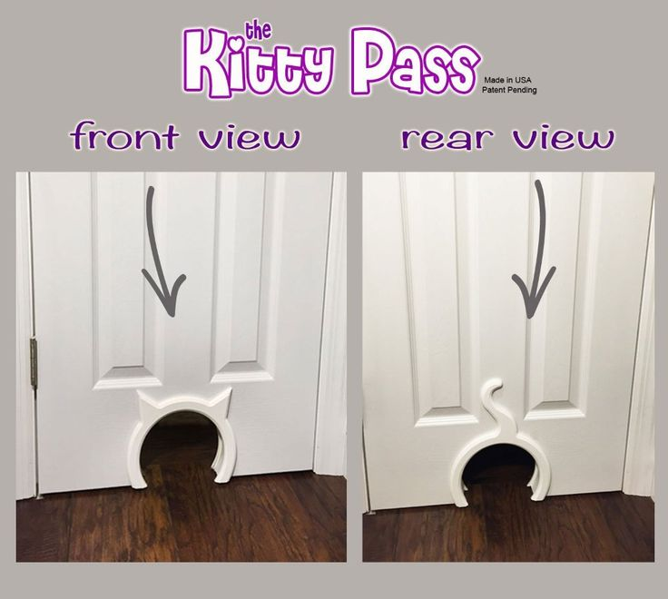 Amazon.com : The Kitty Pass Interior Cat Door, Pet Door Hidden Litter Box. : Pet Supplies