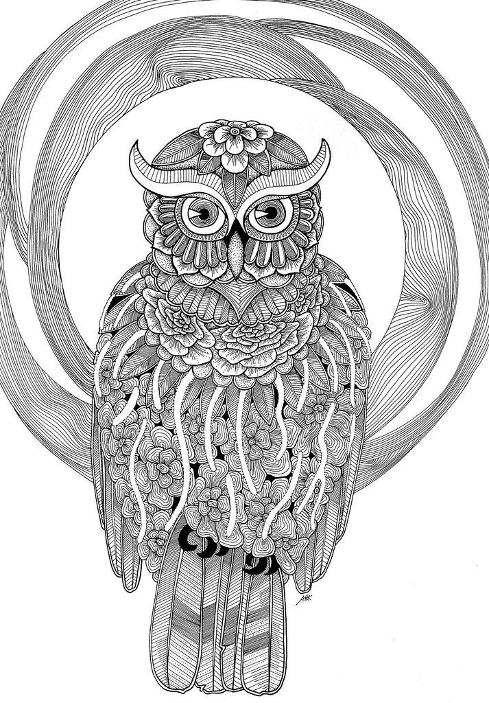 400 best Buhos (02) colorear images on Pinterest | Owls, Coloring ...