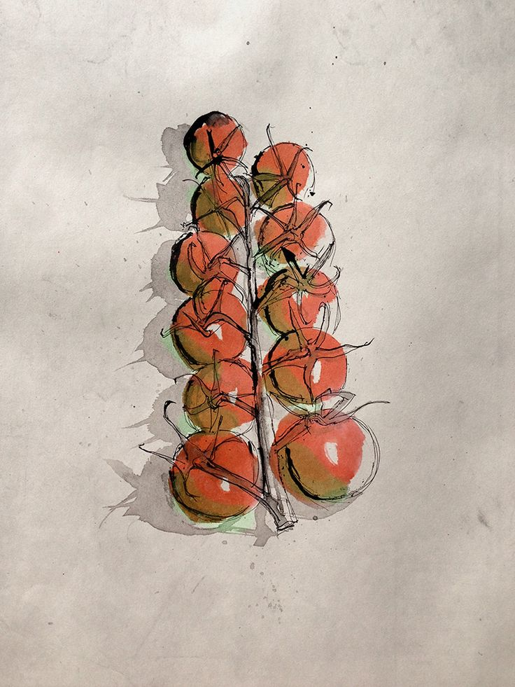 Pen and Ink - Tomatoes