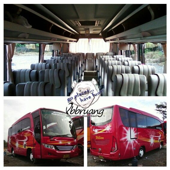 bus pariwisata william mediumbus