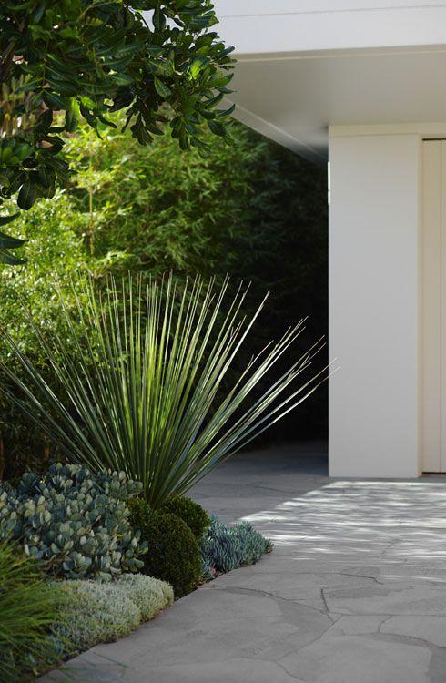 Landscape Design Coogee | Secret Gardens of Sydney http://www.smashwords.com/profile/view/llewelynpritchard Smashwords http://www.amazon.com/E-R-Llewelyn-Pritchard/e/B0061KYLG2/ref=ntt_dp_epwbk_0 Amazon http://anitasaffordableapartments.blogspot.com Anitas Affordable Apartments