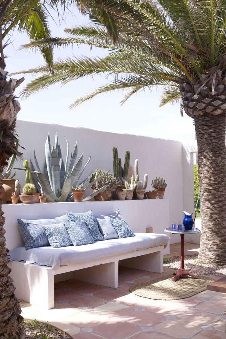 Una panca fatta di lime, succulente – agavi, cactus – e l'esterno …