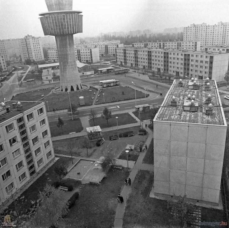 1978 ősz