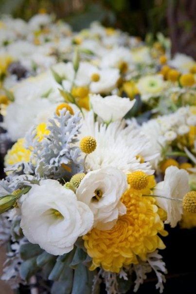 flores... flores... flores...