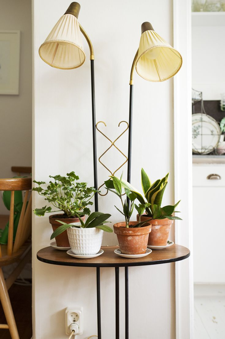 succulent table with lamp