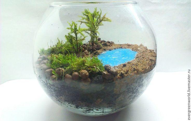 """Купить Флорариум Шар """"Пляж"""" - зеленый, сад мхов, мох, Сад в бутылке, живой мох"""