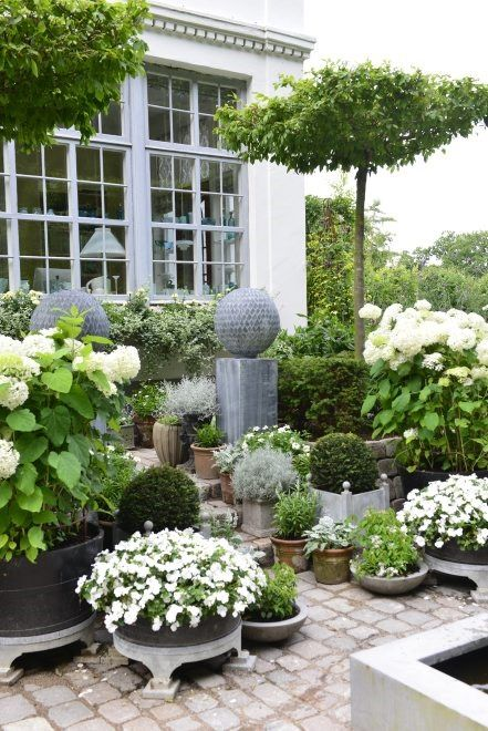 .Look at all the flowers. They are mostly in CONTAINERS! And they have used small trees to add structure and height.to their patio garden.