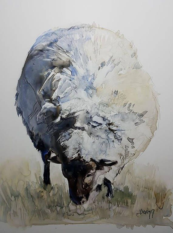 Sheep Art Sheep Painting Sheep Watercolor Yupo Art Farm