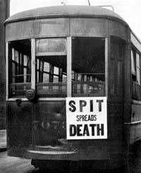 the 1918 1919 influenza epidemic essay Free essay: the influenza and pneumonia epidemic of 1918-1919 in the ten months between september 1918 and june 1919, 675,000 americans died of influenza and.