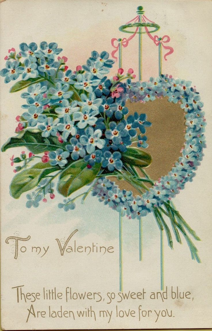801 best valentine images on Pinterest  Christmas card sayings