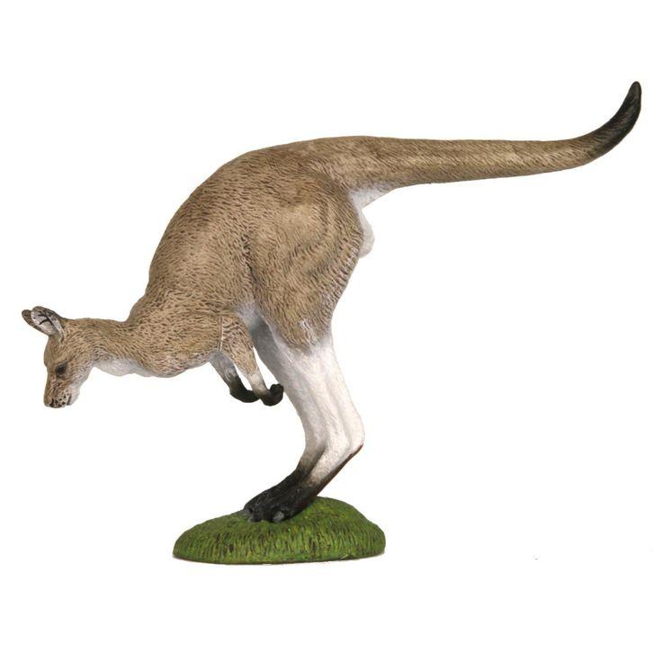 Eastern Grey Kangaroo Hopping | Worldwide shipping www.minizoo.com.au