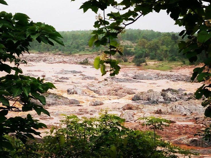 Damoder River at #rajarappa #jharkhand #jharkhandtourism #india #incredibleindia #river #tree #temple