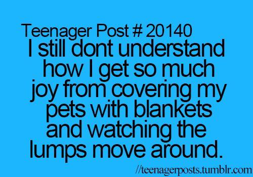 Wish I had pets!