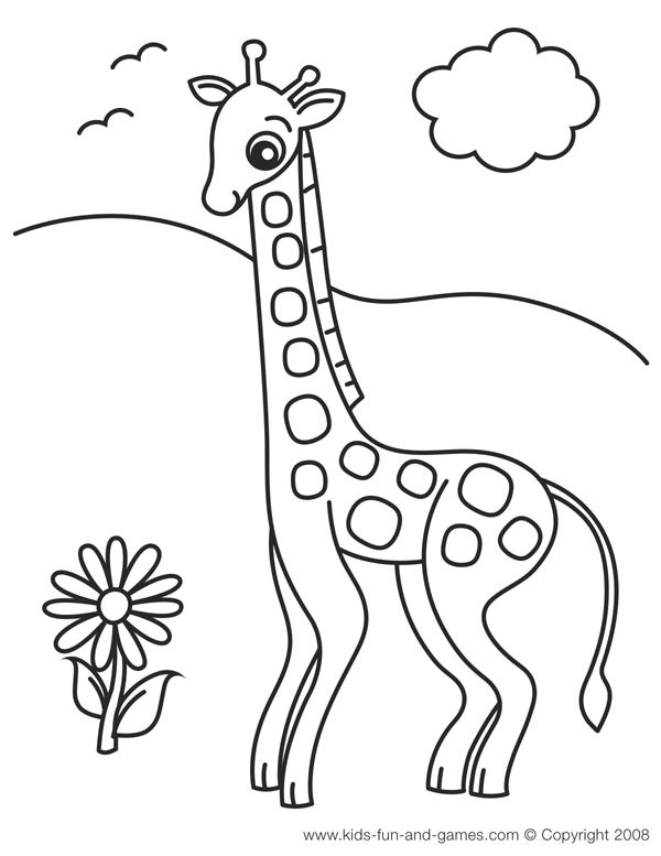 Jungle Animals Coloring Pages Preschool : 119 best images about zoo theme on pinterest