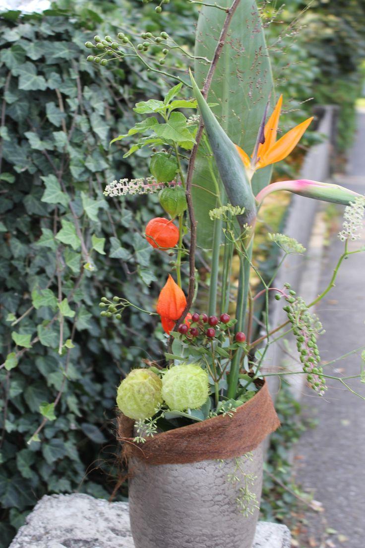 Herbstgesteck orange mit einer Strelizien Blüte