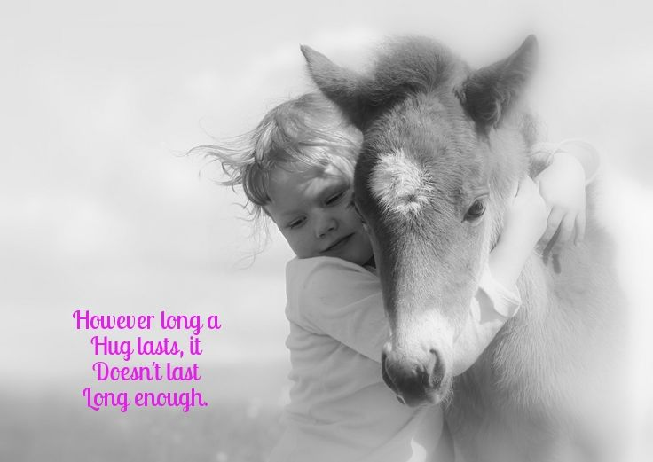 Image result for animal hug with quotes